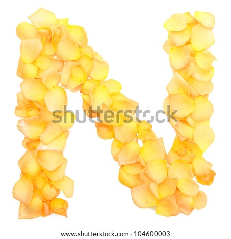 orange rose petals forming letter N, isolated on white