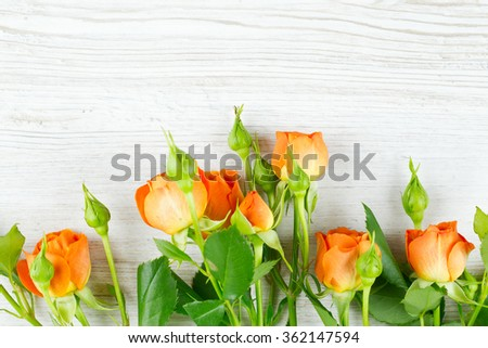 orange roses on wooden surface - stock photo