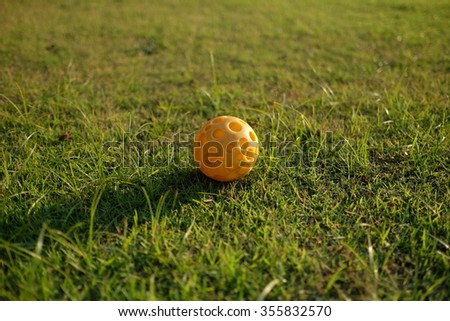 Orange rubble pet ball on the grass