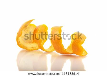 Orange Shell Isolated - stock photo