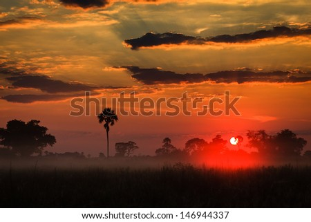 Orange sunrise layers clouds above misty Delta grasslands as in a painting in the Okavango Delta, Botswana, Africa