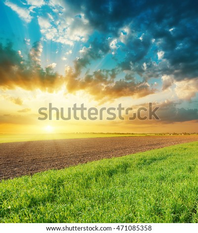 orange sunset over agriculture fields