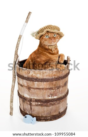 Orange Tabby Cat Wearing a Crocheted Fisherman Hat and Standing in an Old, Weathered Wooden Bucket with a Stick Fishing Pole & Crocheted Fish. Studio Shot on White Background. Includes Clipping Path. - stock photo