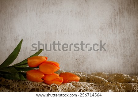Orange tulip flower in a vase still life image - stock photo