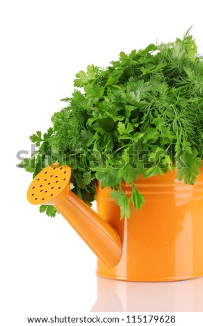 Orange watering can with parsley and dill isolated on white - stock photo