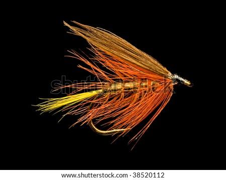 Orange Wet Trout Fishing Fly Isolated on Black Background - stock photo