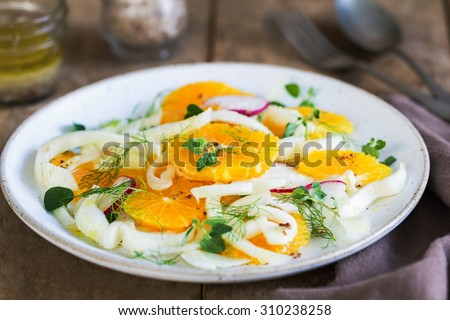 Orange with Fennel and Radish salad by vinaigrette - stock photo