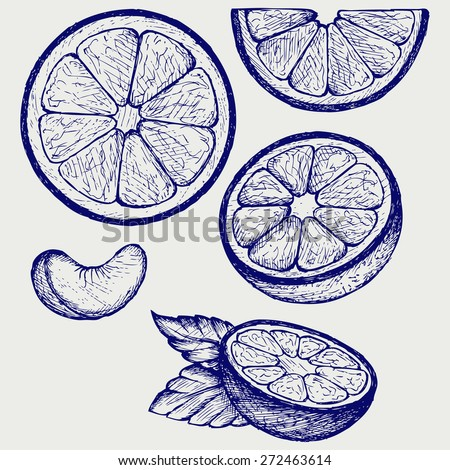 Oranges fruits with green leaves and slices. Doodle style. Raster version - stock photo