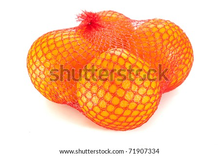 oranges in the grid isolated on white