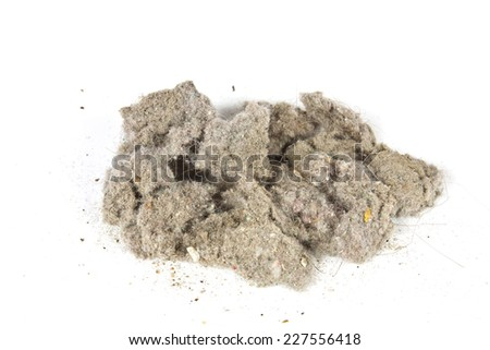 Orb dust cleaning house with vacuum cleaner - stock photo