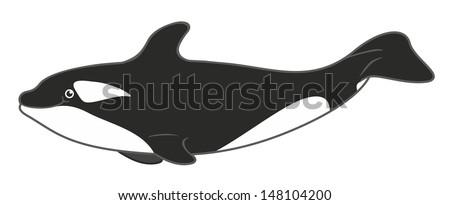 orca cartoon - stock photo