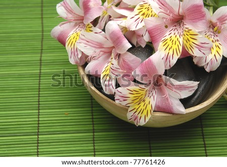 orchid flower floating in bowl on mat - stock photo