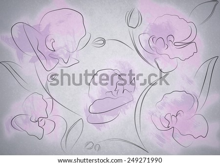 orchid flower illustration - stock photo