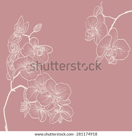 orchid flowers illustration as frame background - stock photo