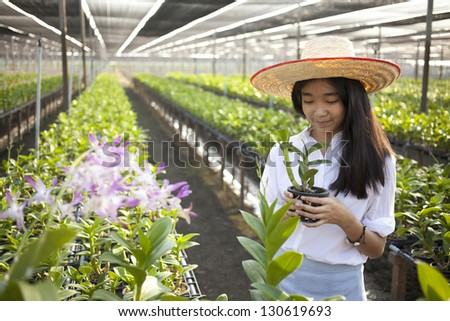 orchid girl, Young Asian girl wearing weave hat in orchid farm