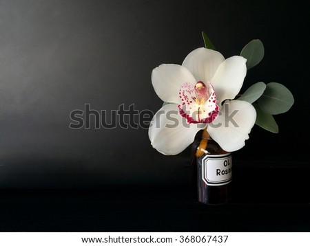 orchid isolated over black background  ideal greeting card