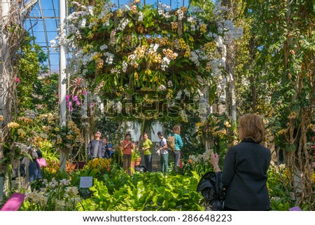Orchid Show Stock Images Royalty Free Images Vectors Shutterstock