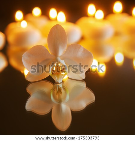 orchid with reflection and burning candles in the background