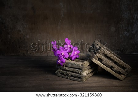 Orchids in old wooden pot.still life style