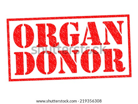 ORGAN DONOR red Rubber Stamp over a white background. - stock photo