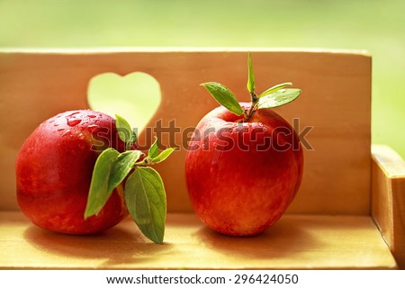 organic and healthy apricot - stock photo