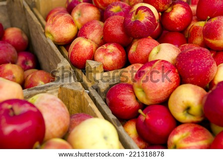 Organic apples from a local market