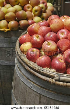 Organic Apples in a Barrel