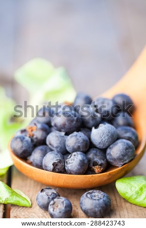 Organic blueberries in spoon. Organic blueberries in spoon on wooden. Natural background. Selective focus.