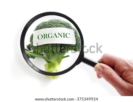 Organic broccoli on white with magnifying glass