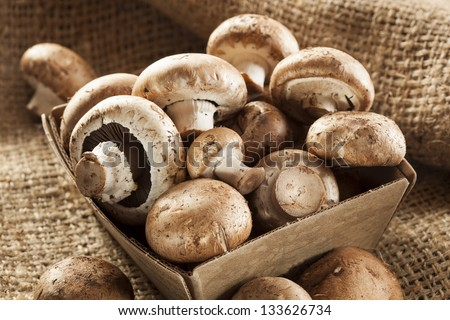 Organic Brown Baby Bella Mushrooms against a background - stock photo