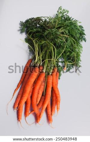 organic bundle carrots - stock photo