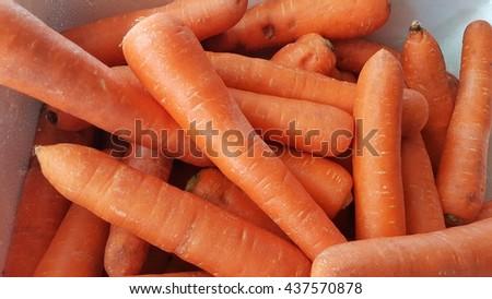 Organic carrot. Food background. - stock photo