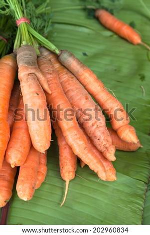 Organic carrot on green banana leaf - stock photo