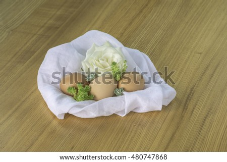 organic egg with small green plant on white cotton