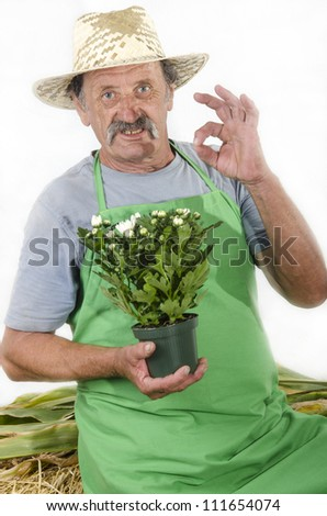 organic farmer with a white chrysanthemums in his hand