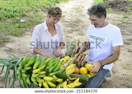 Organic farming: Customer buying fresh vegetables and fruits direct from local farmer - stock photo