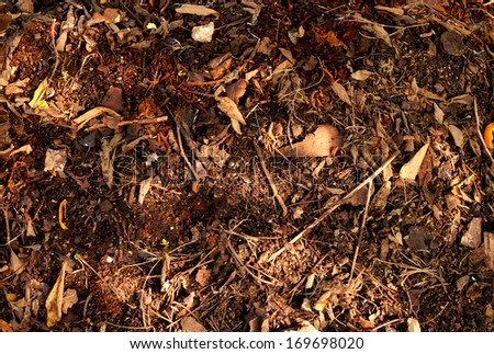 Organic Fertilizer, compost (leaf pile) - stock photo