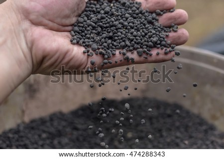 Organic fertilizer in hand farmer