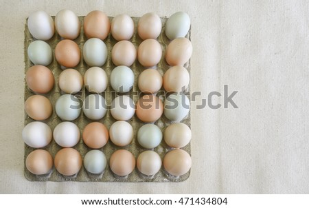 Organic, free range chicken eggs in a cardboard holder with copy space to one side
