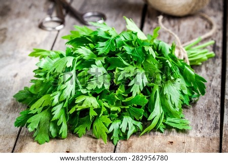 organic fresh bunch of parsley closeup on a wooden rustic table - stock photo
