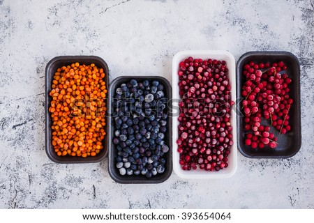 Organic frozen wild berries in plastic boxes packaging tray. Wholesome medicinal wild brier and sea buckthorn used for various treatment picked in autumn. - stock photo