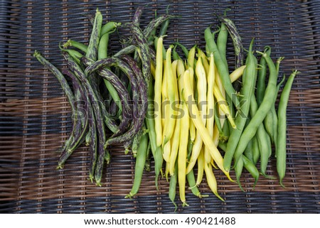 Organic green yellow haricot beans fresh vegetables