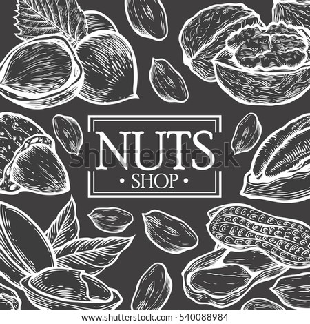 Organic Nuts food shop hand drawn template packaging food, menu label, banner poster identity, branding. Stylish design with sketch illustration of nuts sketch