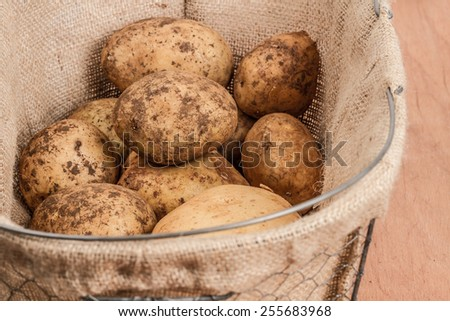 organic potatoes  in basket  - stock photo