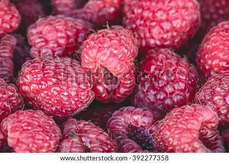 Organic raspberries for sale at a market. Organic raspberries, juicy organic natural healthy and nutritional sweet super fruit. - stock photo