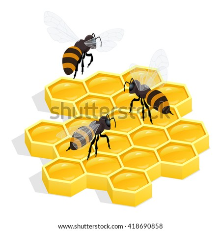 Organic raw honey, honey comb, honey flyer, honey Apiary, honey ladle, honey bee, honey dipper, honey flowers, honey wax, honey beehive, honey natural, honey healthy food production, honey flat - stock photo