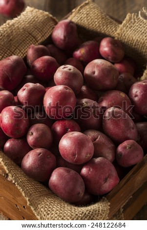 Organic Raw Red Potatoes in a Basket - stock photo