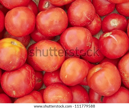 organic raw tomatoes, natural background