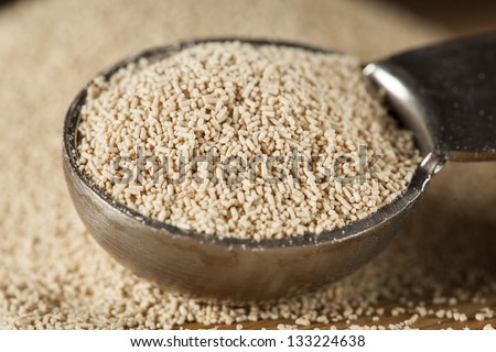 Organic Raw Yeast for baking bread against a background