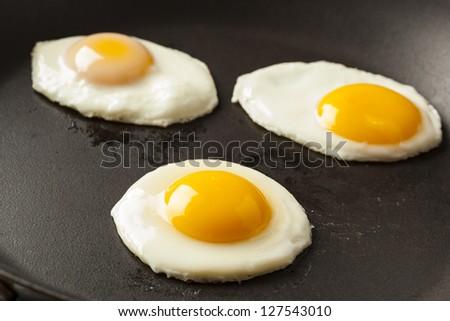 Organic Sunnyside up Egg ready for breakfast - stock photo